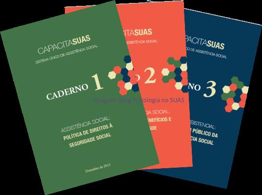 Cadernos CapacitaSUAS - Blog Psicologia no SUAS_Rozana